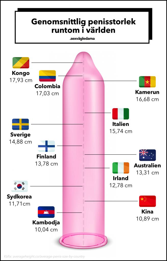 Genomsnittlig penisstorlek i världen